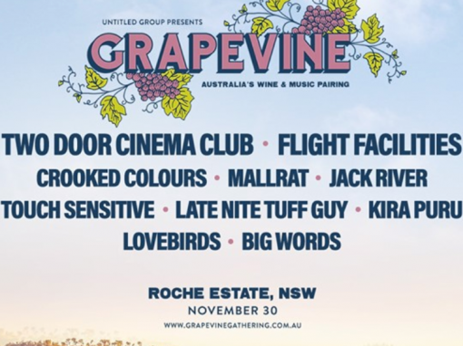 Grapevine, Roche Estate – 30th Nov 2019
